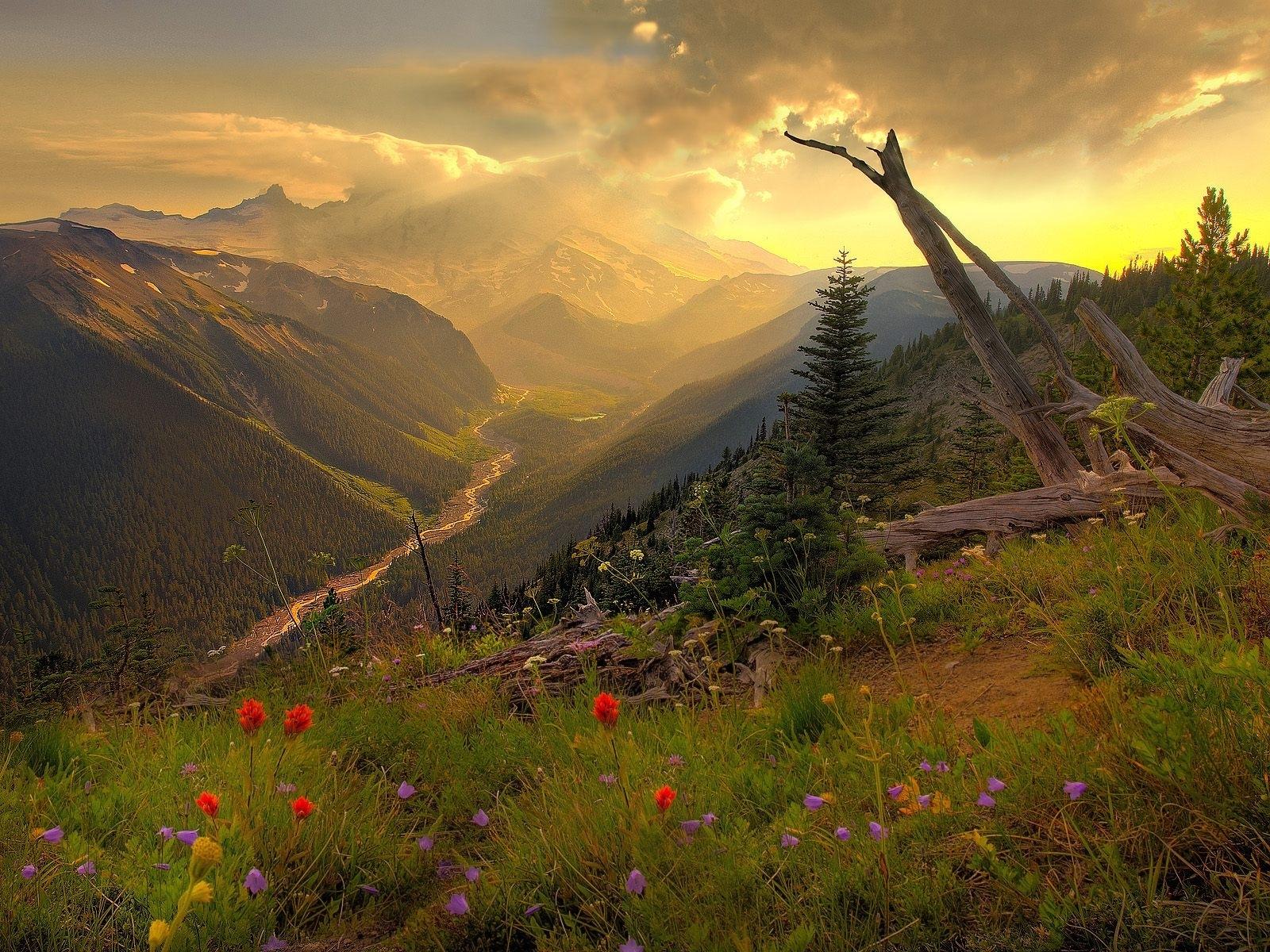8514 скачать обои Пейзаж, Горы - заставки и картинки бесплатно