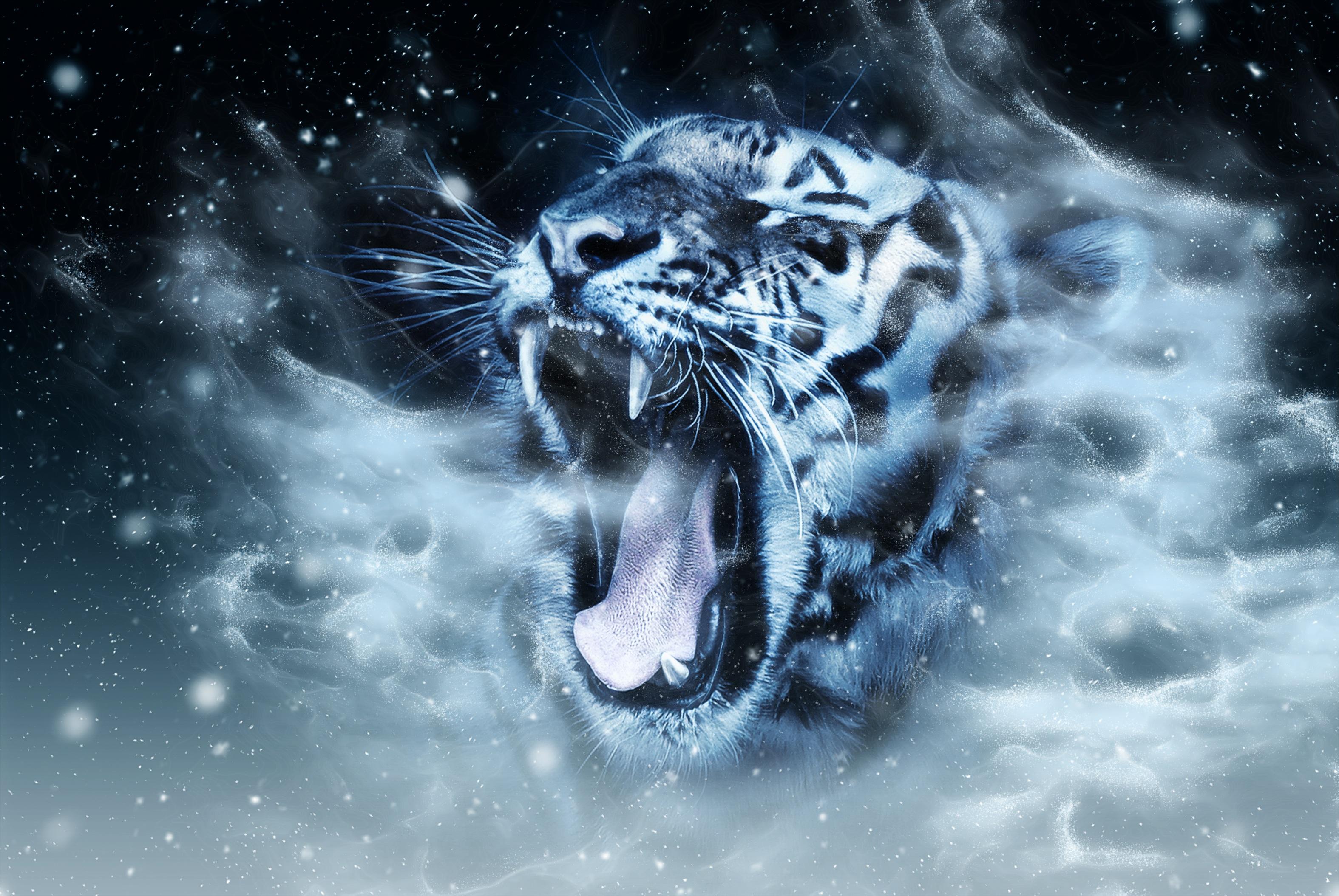 118323 Hintergrundbild herunterladen Tiere, Grinsen, Grin, Schnauze, Raubtier, Predator, Tiger, Photoshop - Bildschirmschoner und Bilder kostenlos