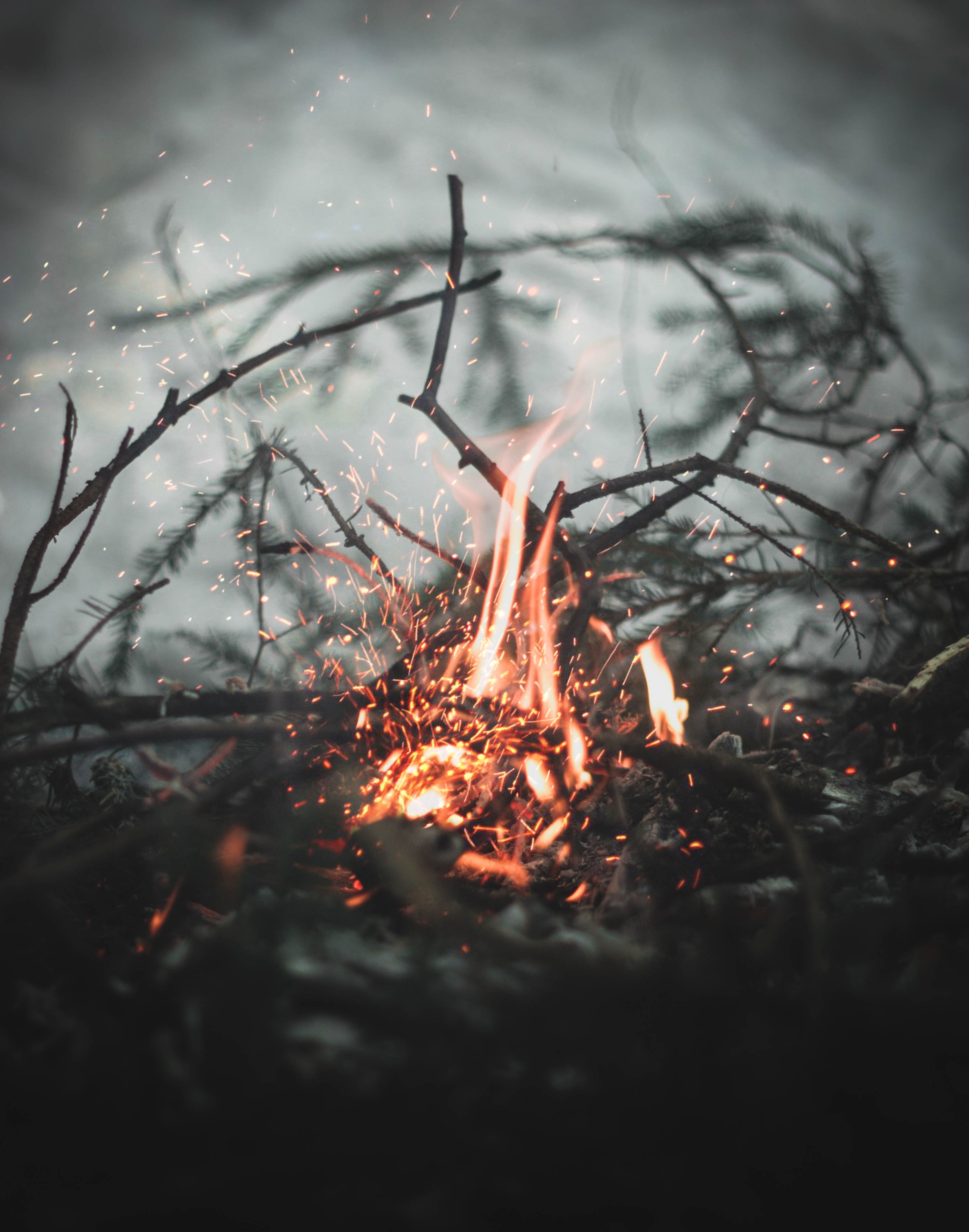 82746 Screensavers and Wallpapers Bonfire for phone. Download Blur, Fire, Bonfire, Sparks, Miscellanea, Miscellaneous, Smooth, Branches pictures for free