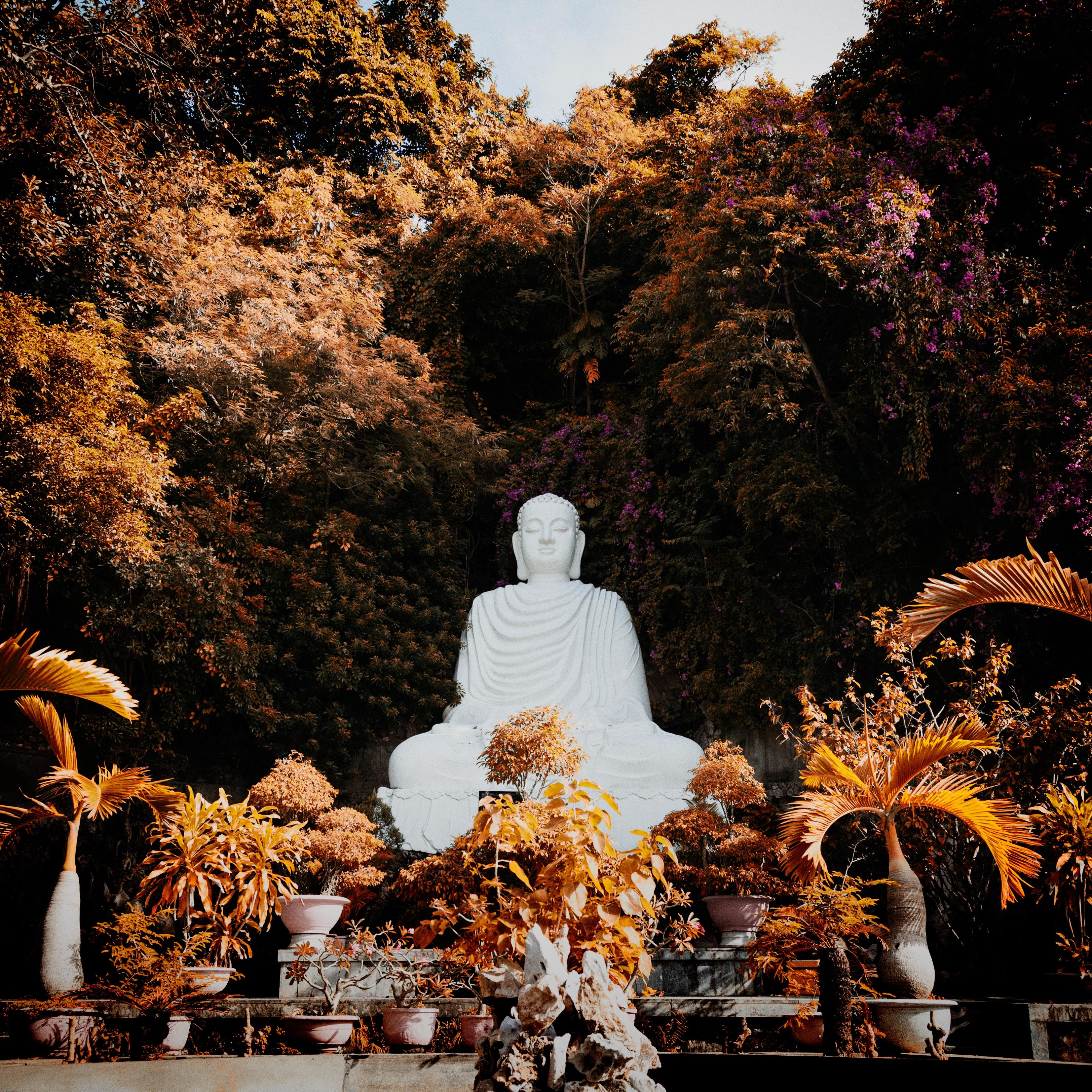 138058 скачать обои Разное, Будда, Буддизм, Гармония, Скульптура, Деревья, Растения - заставки и картинки бесплатно