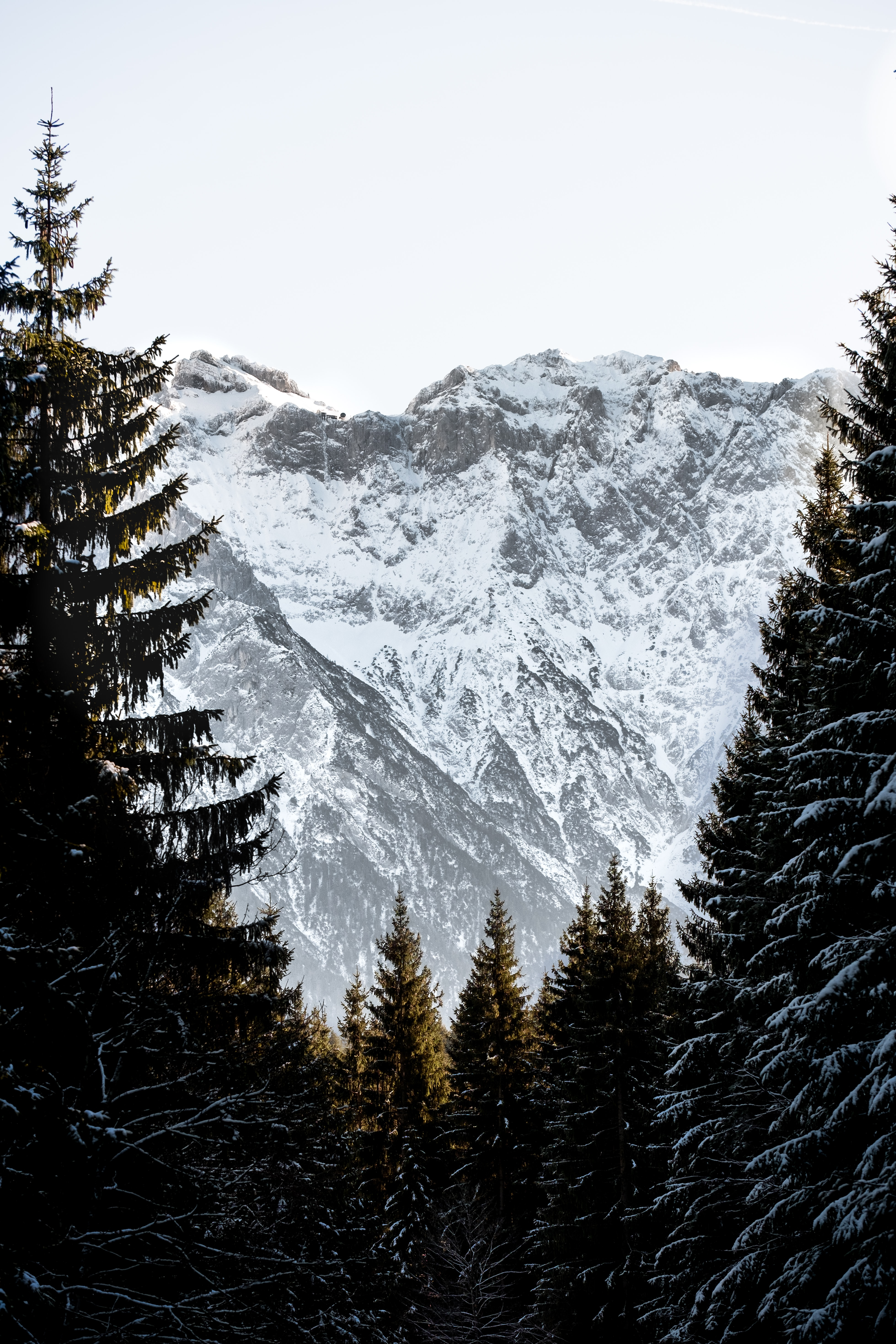 73355 download wallpaper Nature, Rocks, Snow, Snow Covered, Snowbound, Spruce, Fir, Sky, Mountains screensavers and pictures for free