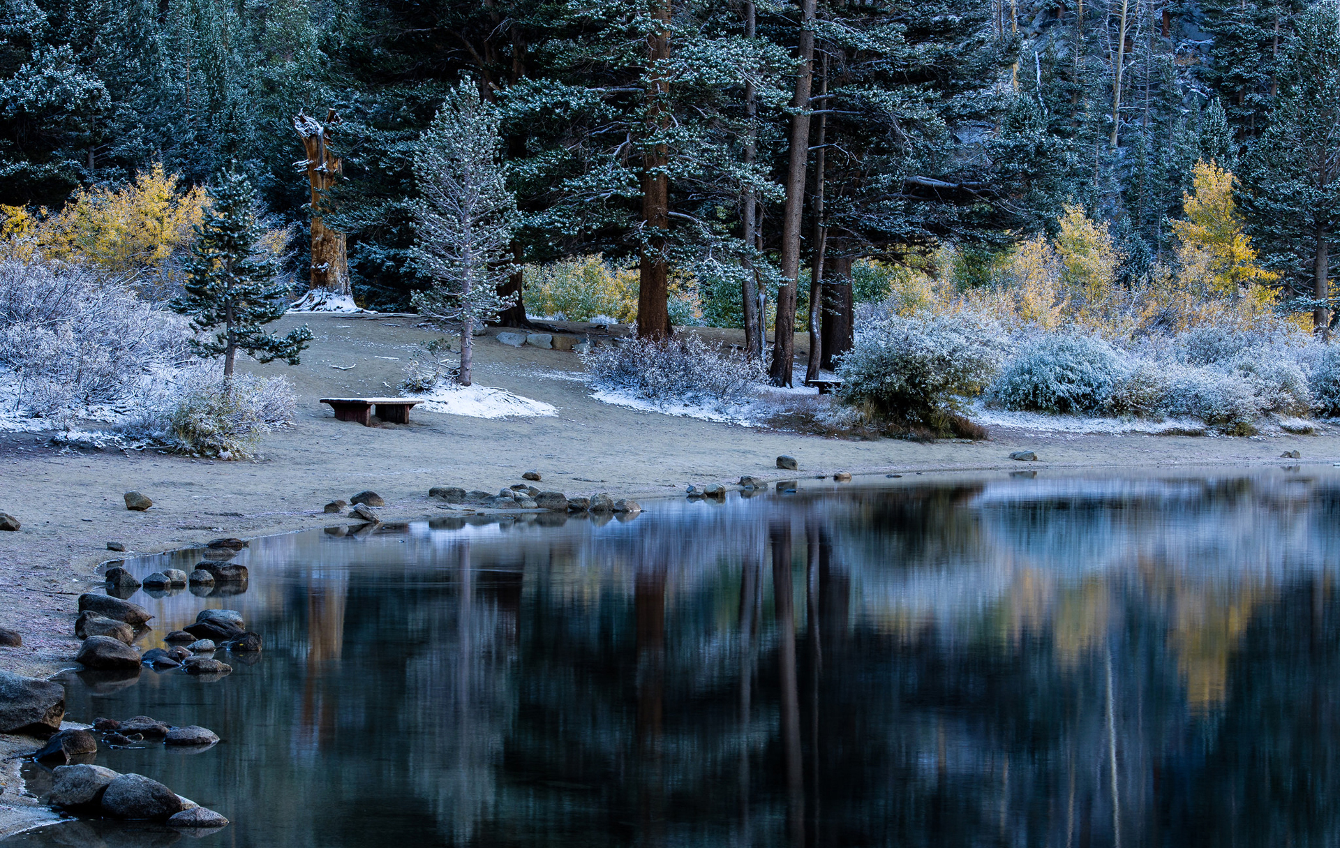 83876 download wallpaper Nature, Rivers, Trees, Lake, Shore, Bank, Forest, Table screensavers and pictures for free