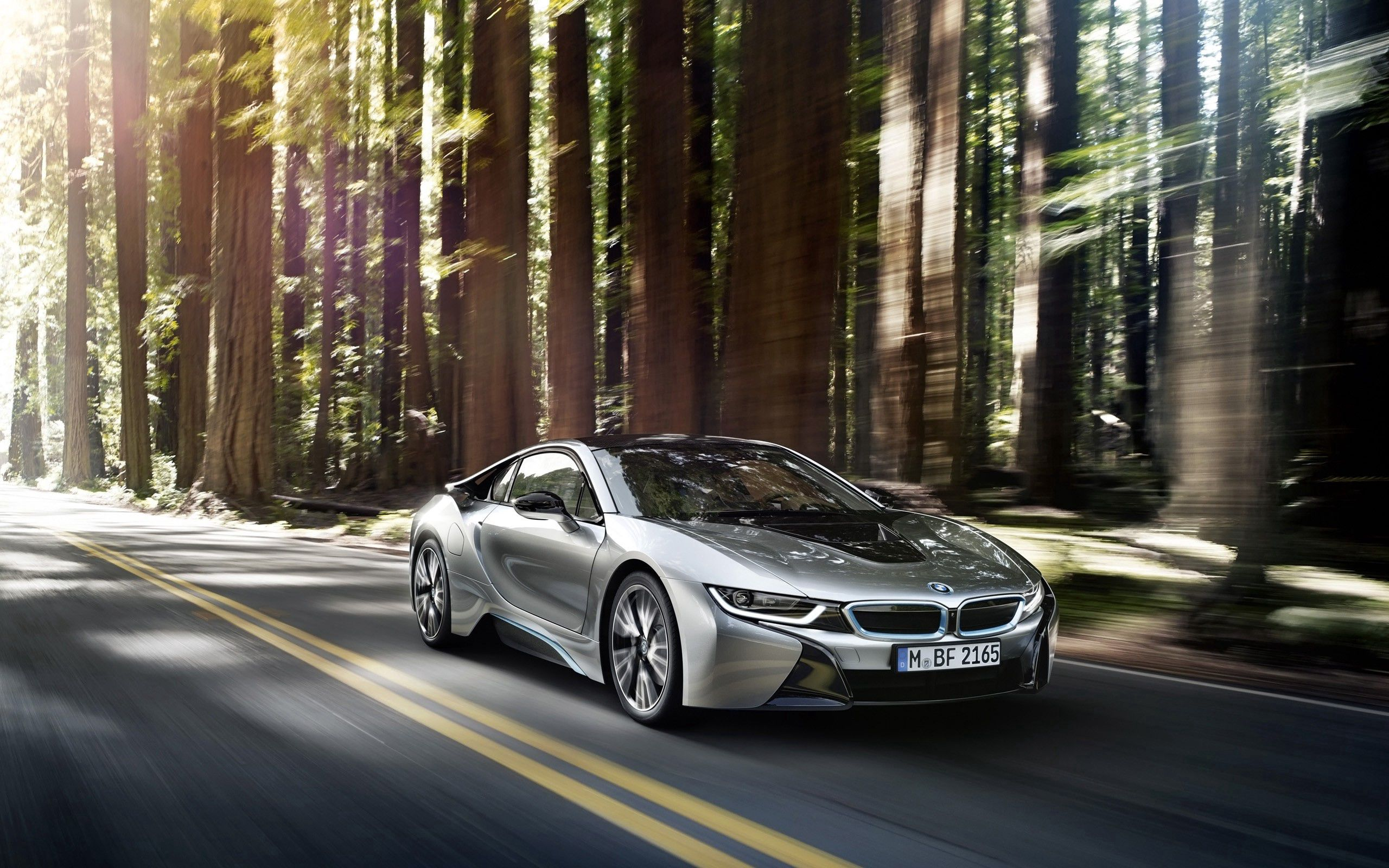 65214 download wallpaper Bmw, Cars, Side View, Silver, Silvery, I8 screensavers and pictures for free