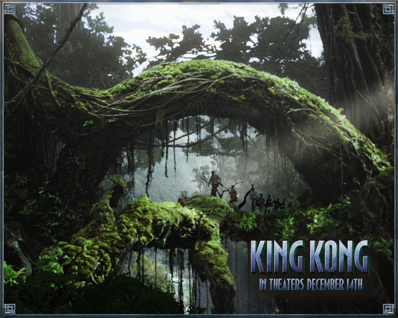 14637 скачать обои Кино, Кинг Конг (King Kong) - заставки и картинки бесплатно