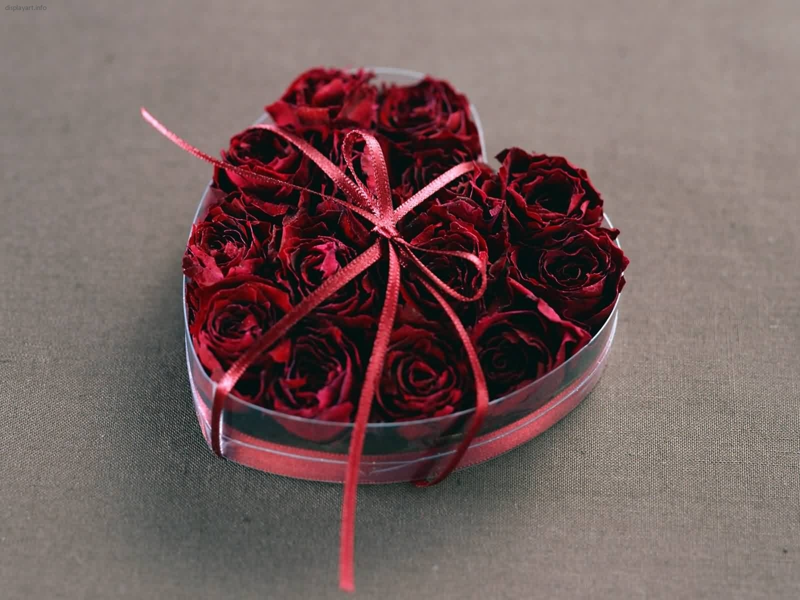 4244 download wallpaper Holidays, Plants, Flowers, Roses, Hearts, Love, Valentine's Day screensavers and pictures for free