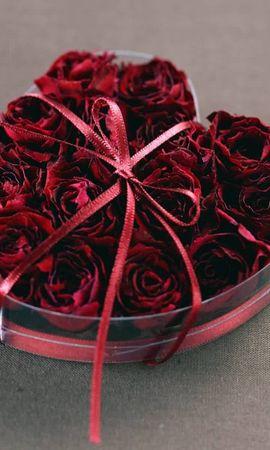 4244 скачать обои Праздники, Растения, Цветы, Розы, Сердца, Любовь, День Святого Валентина (Valentine's Day) - заставки и картинки бесплатно