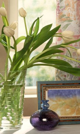8837 скачать обои Растения, Цветы, Тюльпаны, Рисунки - заставки и картинки бесплатно