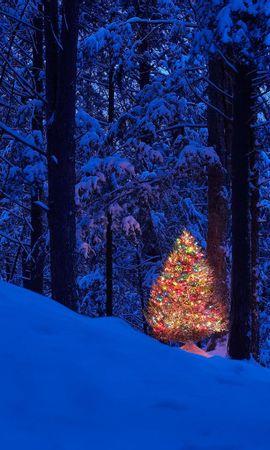 45593 descargar fondo de pantalla Vacaciones, Paisaje, Naturaleza, Árboles, Año Nuevo, Nieve: protectores de pantalla e imágenes gratis