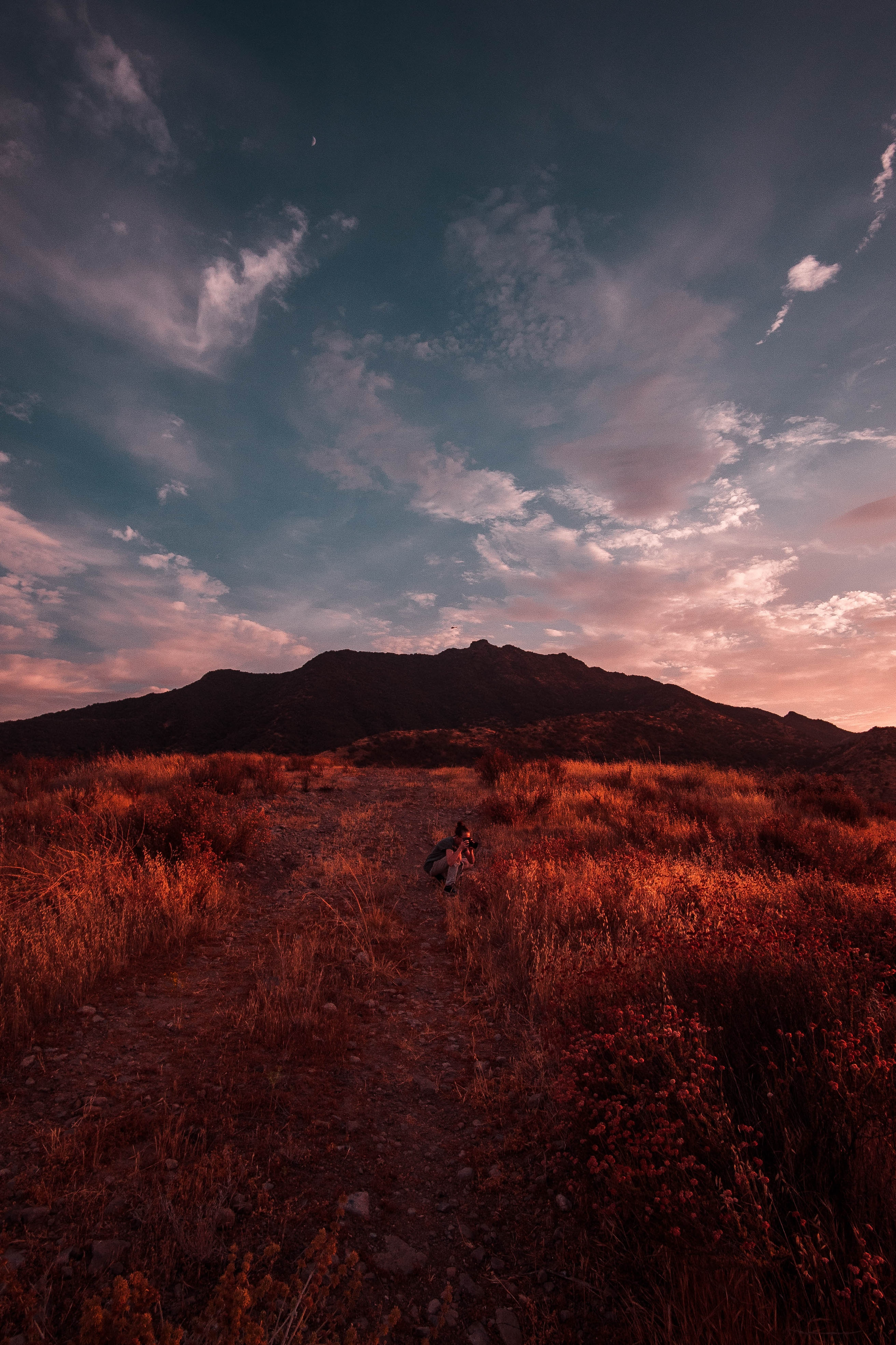 109224 Screensavers and Wallpapers Photographer for phone. Download Nature, Sunset, Grass, Sky, Field, Photographer pictures for free
