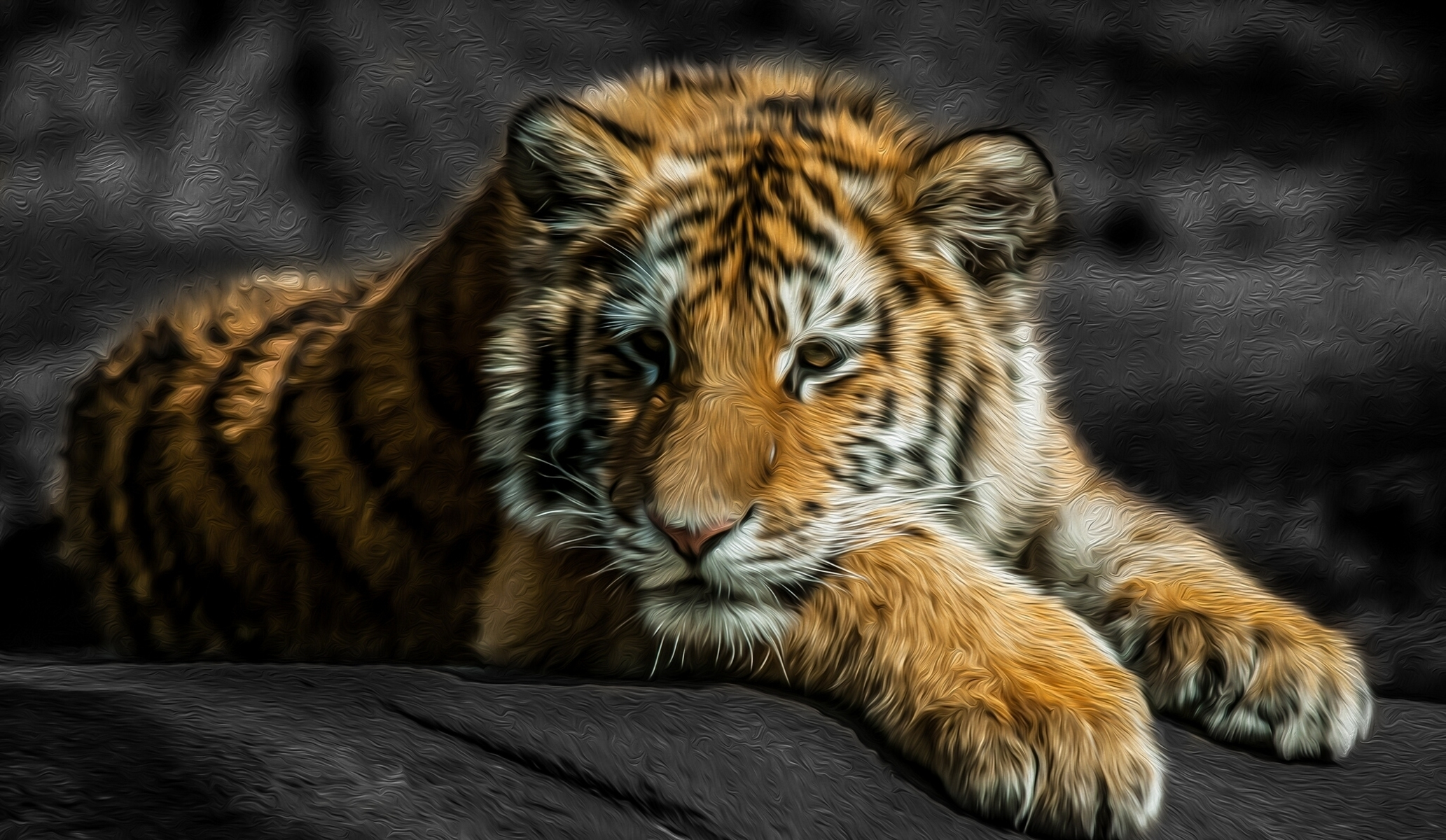 67156 Screensavers and Wallpapers Young for phone. Download Animals, Young, Kitty, Kitten, To Lie Down, Lie, Predator, Tiger, Joey, Tiger Cub pictures for free