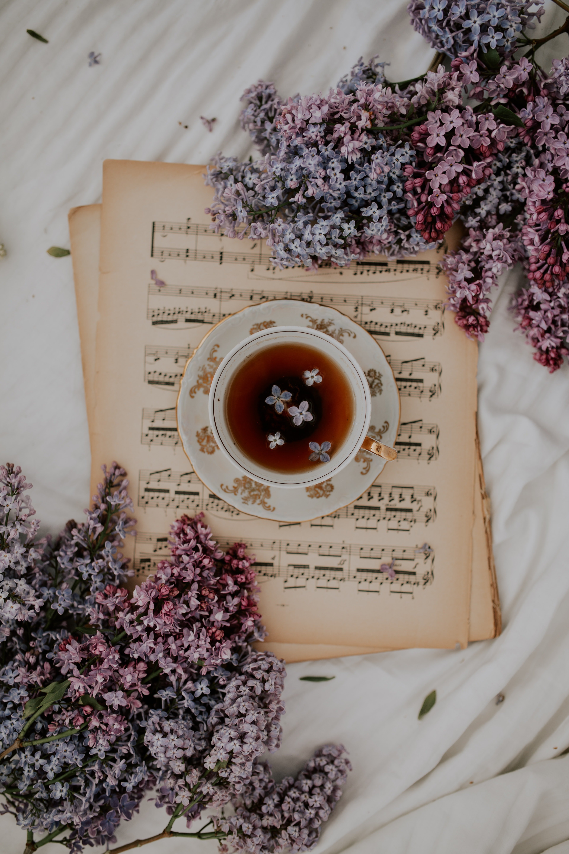 77522 Hintergrundbild herunterladen Musik, Blumen, Lilac, Verschiedenes, Sonstige, Eine Tasse, Tasse, Tee, Anmerkungen - Bildschirmschoner und Bilder kostenlos