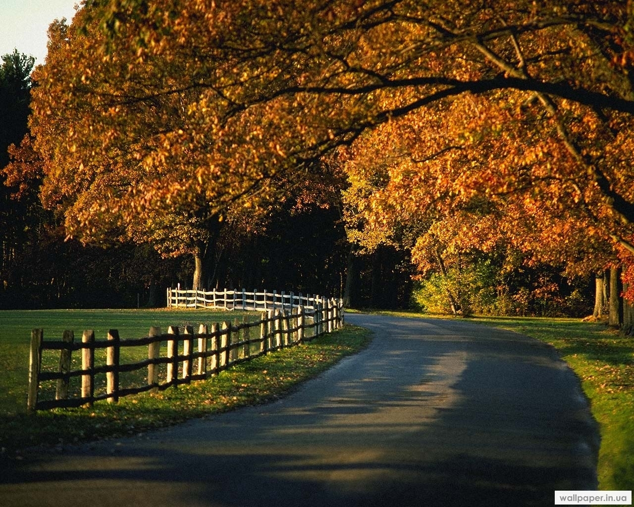 5407 download wallpaper Landscape, Trees, Roads, Autumn screensavers and pictures for free