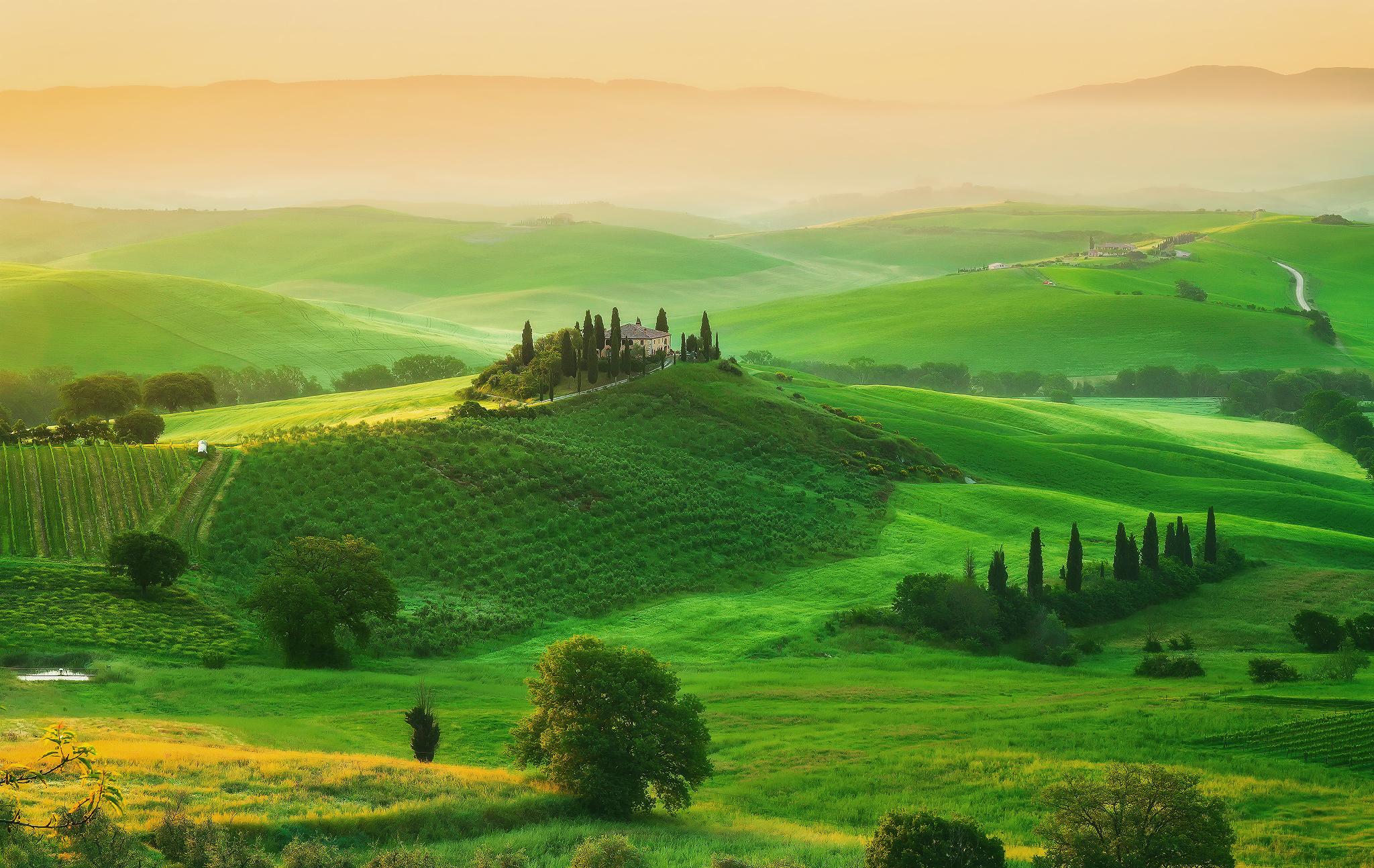 118909 скачать обои Италия, Природа, Трава, Поле, Тоскана, Усадьба - заставки и картинки бесплатно
