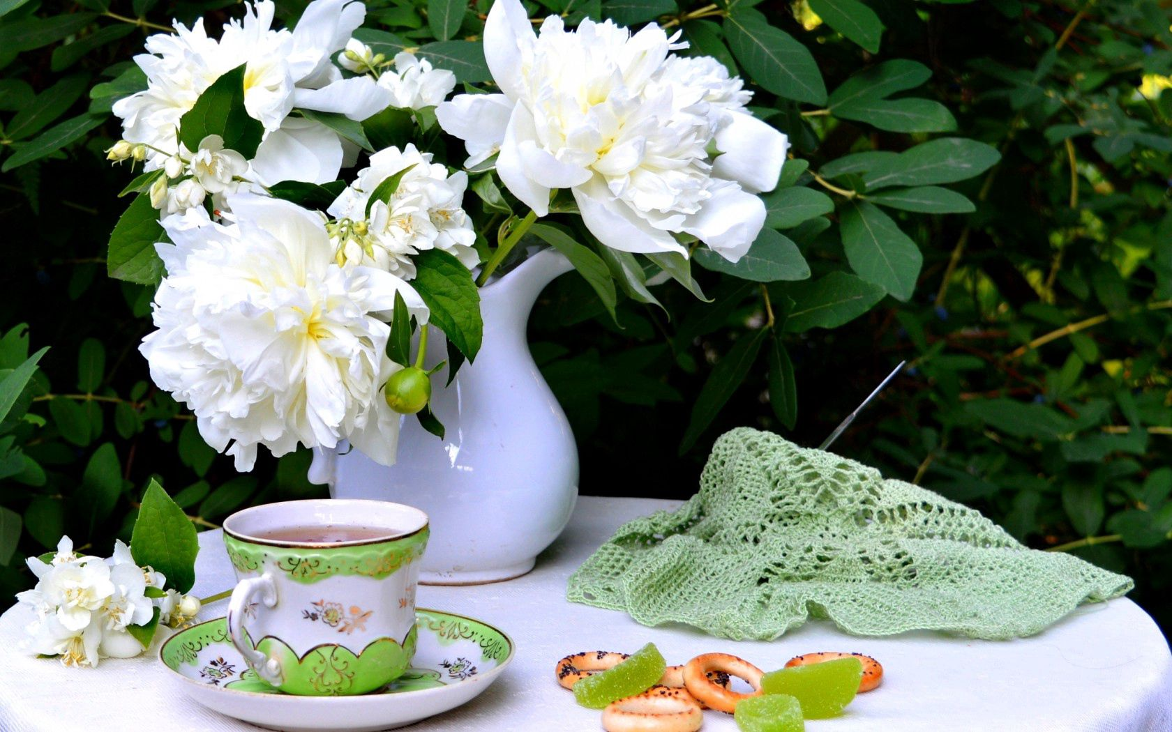 97677 Screensavers and Wallpapers Cup for phone. Download Flowers, Food, Still Life, Cup, Drying pictures for free
