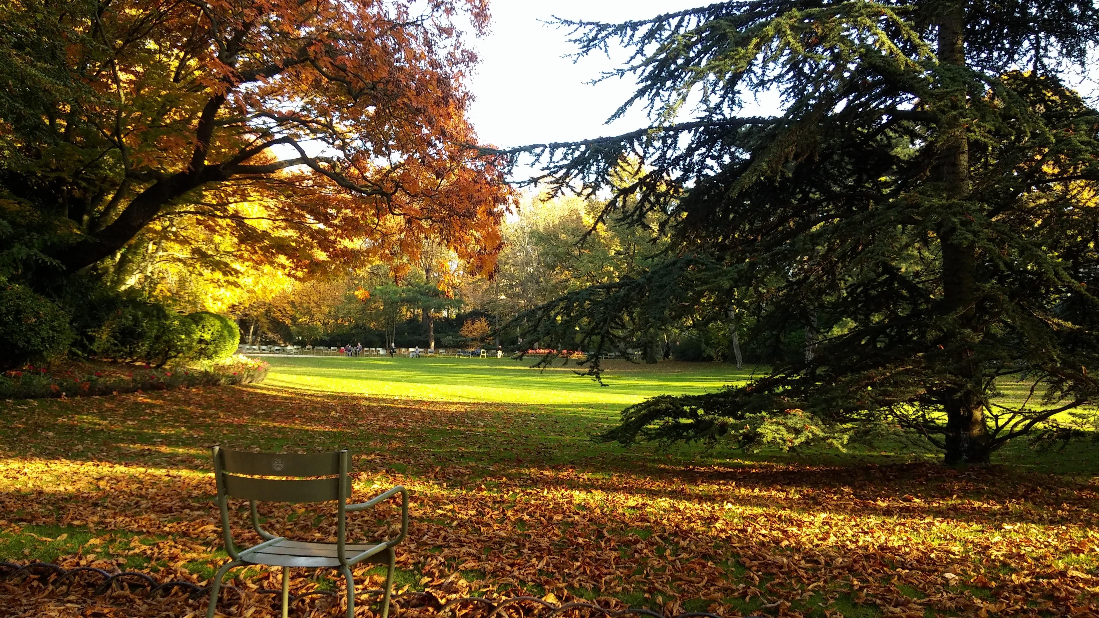140225壁紙のダウンロード自然, フランス, パリ, ルクセンブルク, 公園, 秋, 椅子-スクリーンセーバーと写真を無料で