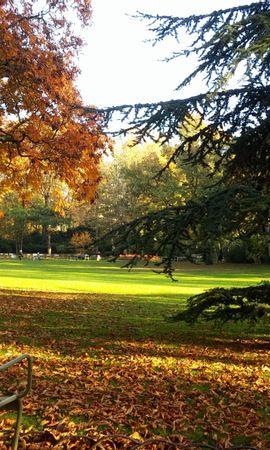140225 baixar papel de parede Natureza, França, Paris, Luxemburgo, O Parque, Parque, Outono, Cadeira - protetores de tela e imagens gratuitamente