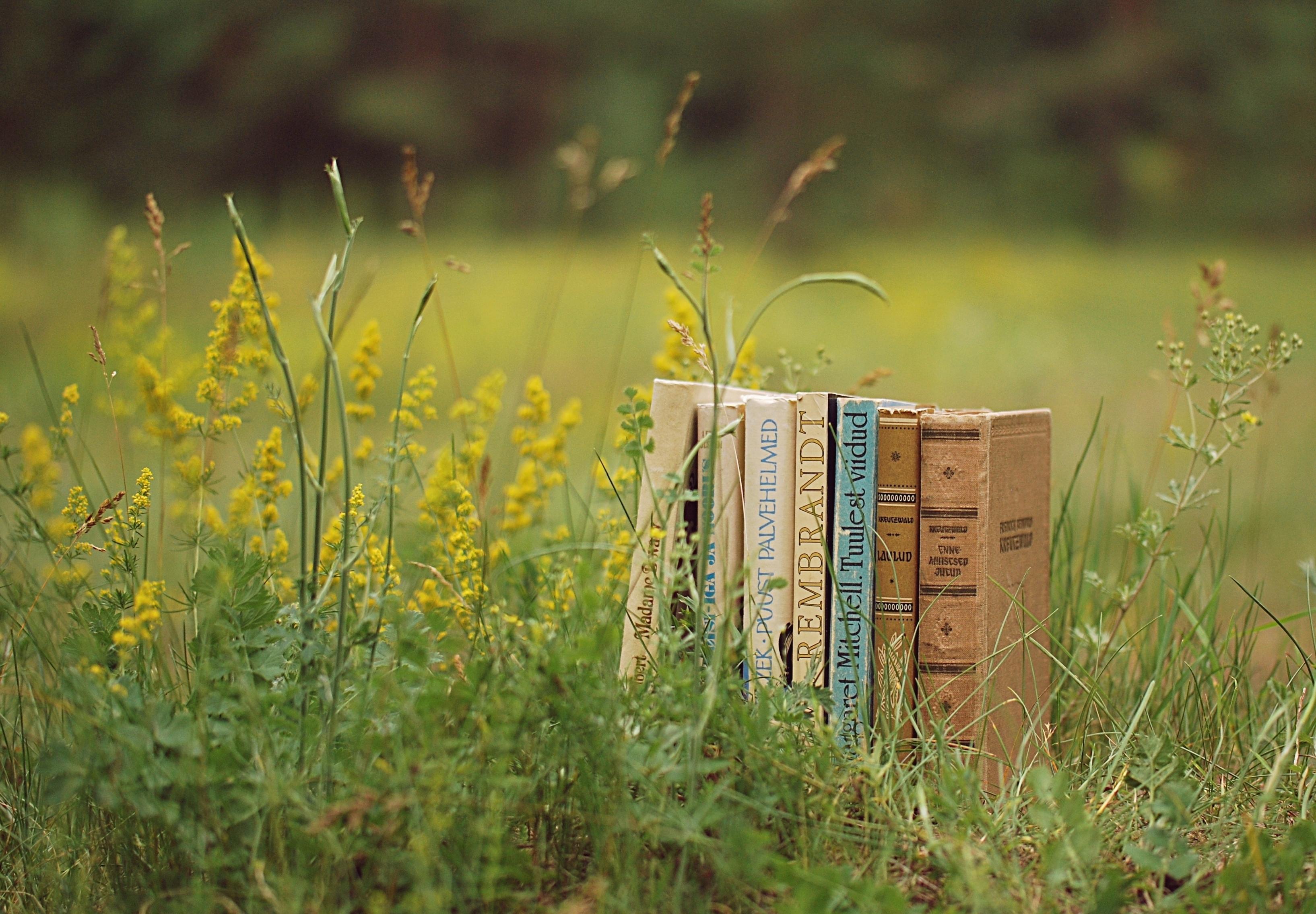 77702 скачать обои Разное, Книги, Трава, Стопка, Настроение - заставки и картинки бесплатно