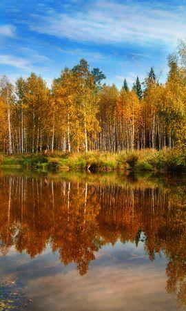 28243 скачать обои Пейзаж, Река, Деревья, Осень - заставки и картинки бесплатно