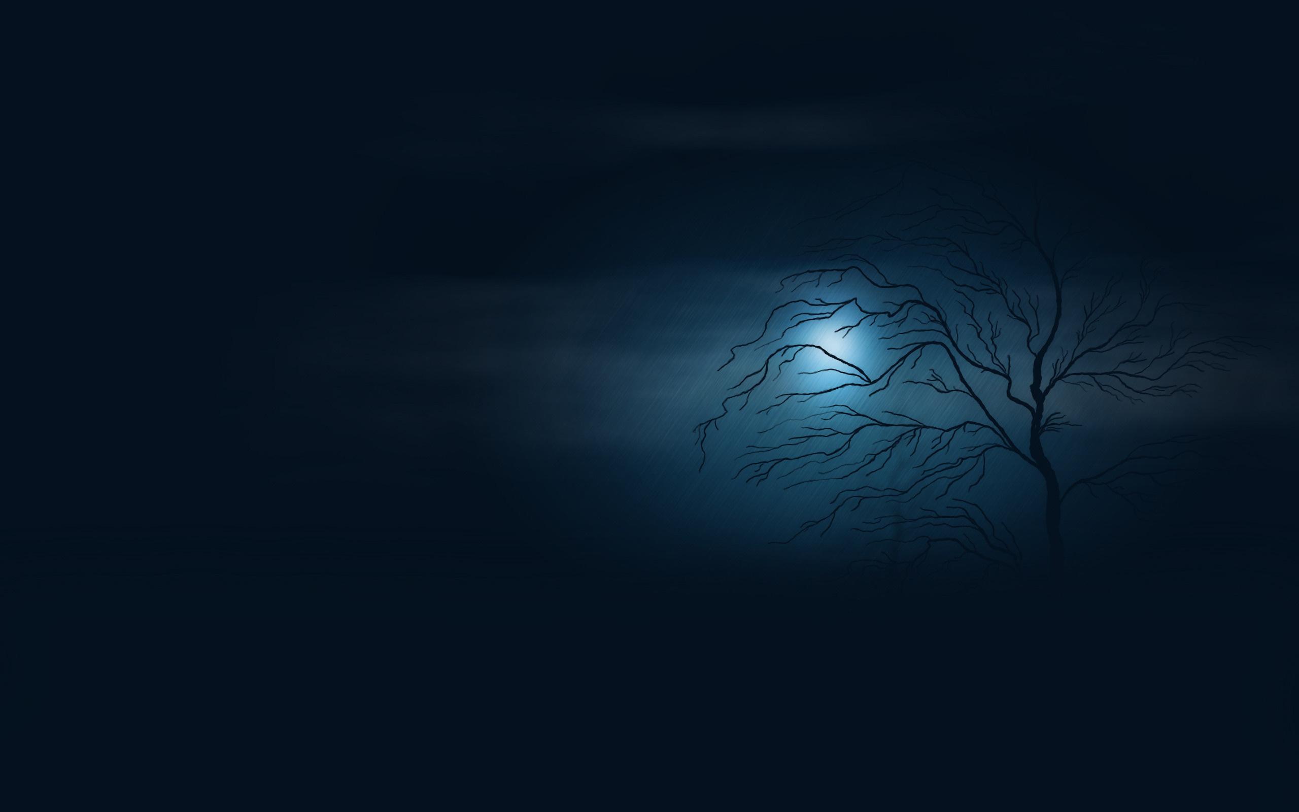 19735 скачать обои Деревья, Фон, Ночь - заставки и картинки бесплатно