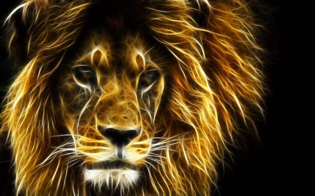 44368 download wallpaper Animals, Lions screensavers and pictures for free