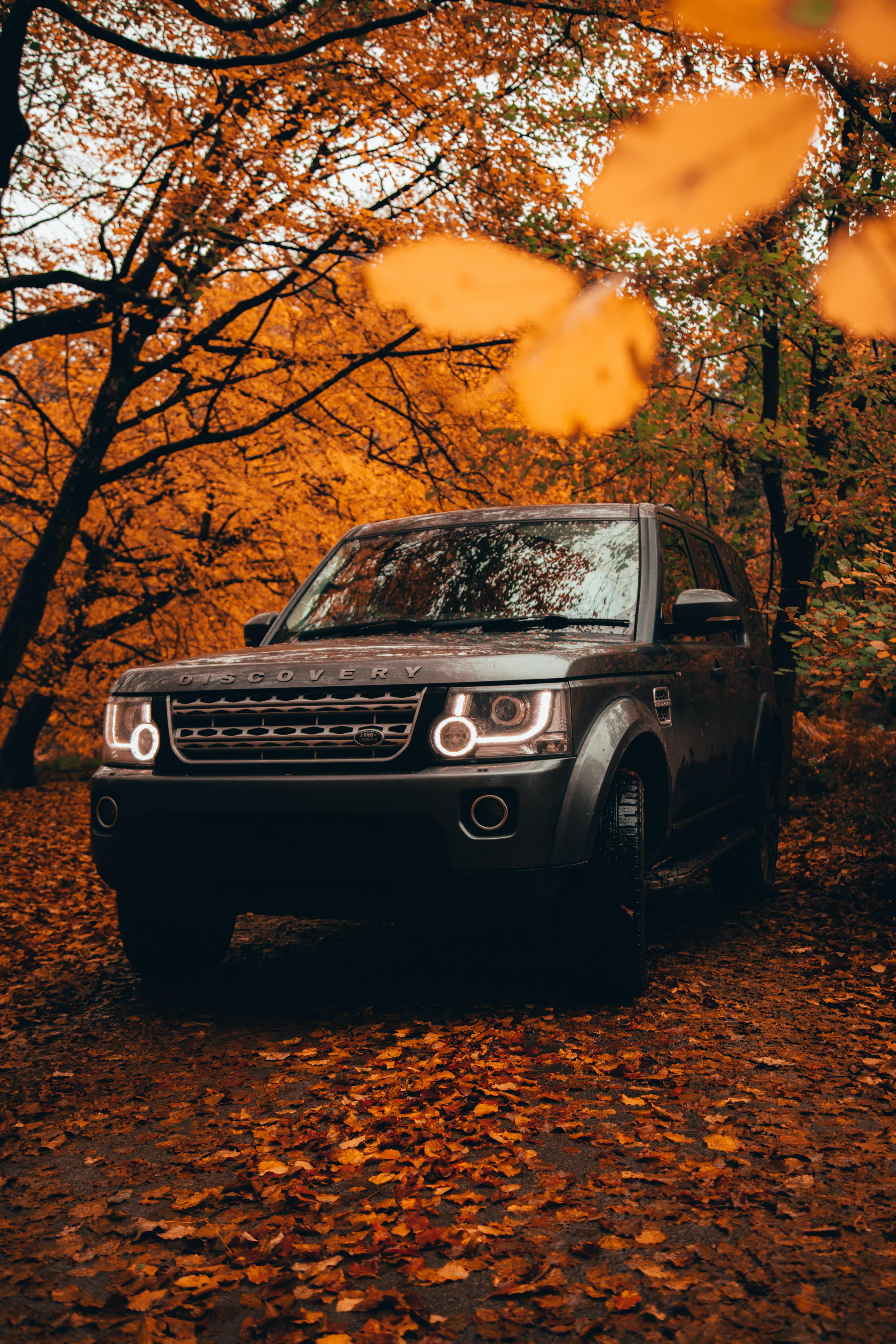 78728 Заставки и Обои Вид Спереди на телефон. Скачать Ленд Ровер (Land Rover), Автомобиль, Вид Спереди, Тачки (Cars), Внедорожник, Серый, Land Rover Discovery картинки бесплатно