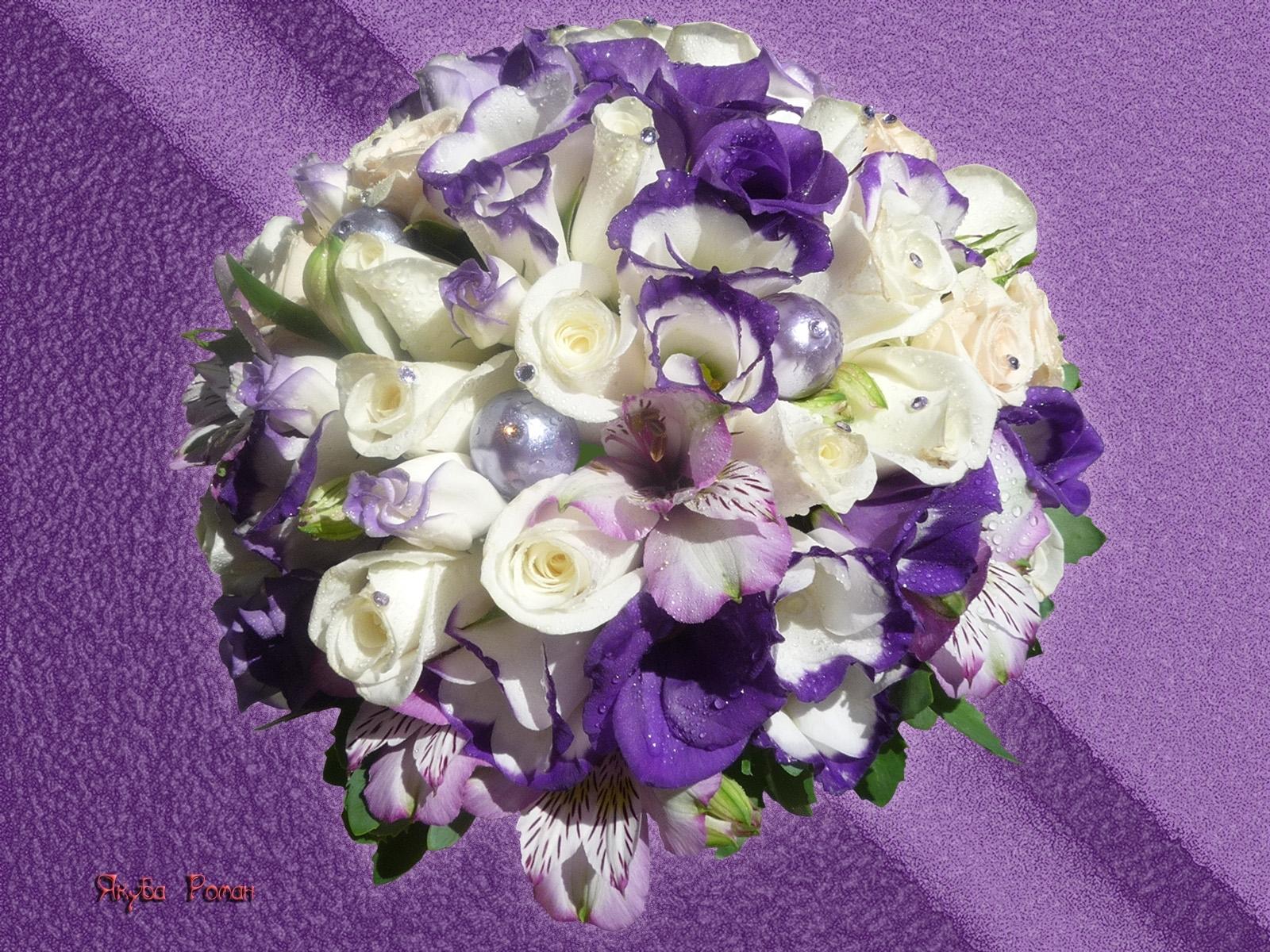 8710 скачать обои Растения, Цветы, Открытки - заставки и картинки бесплатно