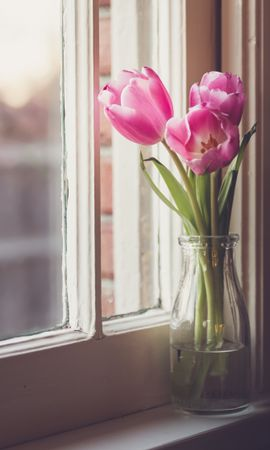 Скачать бесплатно картинку 56672: Цветы, Ваза, Окно, Тюльпаны обои на телефон