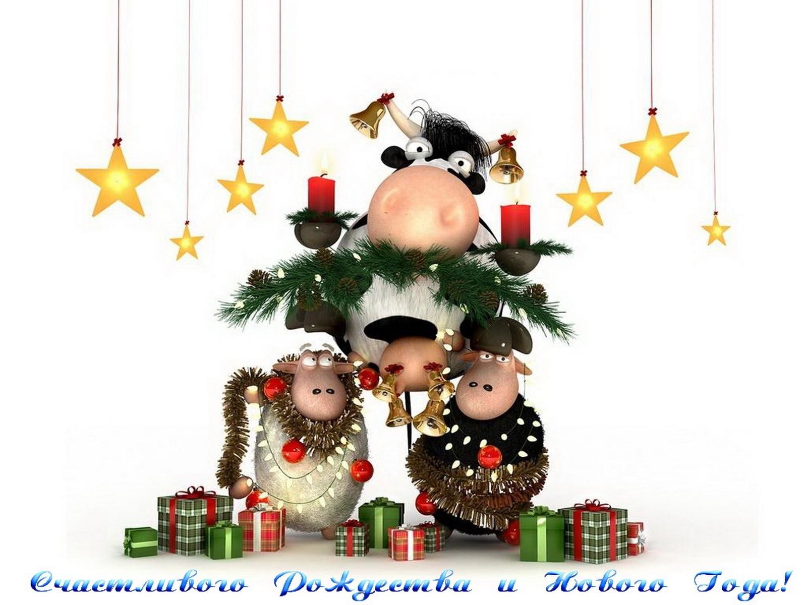 3550 скачать обои Праздники, Новый Год (New Year), Рождество (Christmas, Xmas), Коровы - заставки и картинки бесплатно
