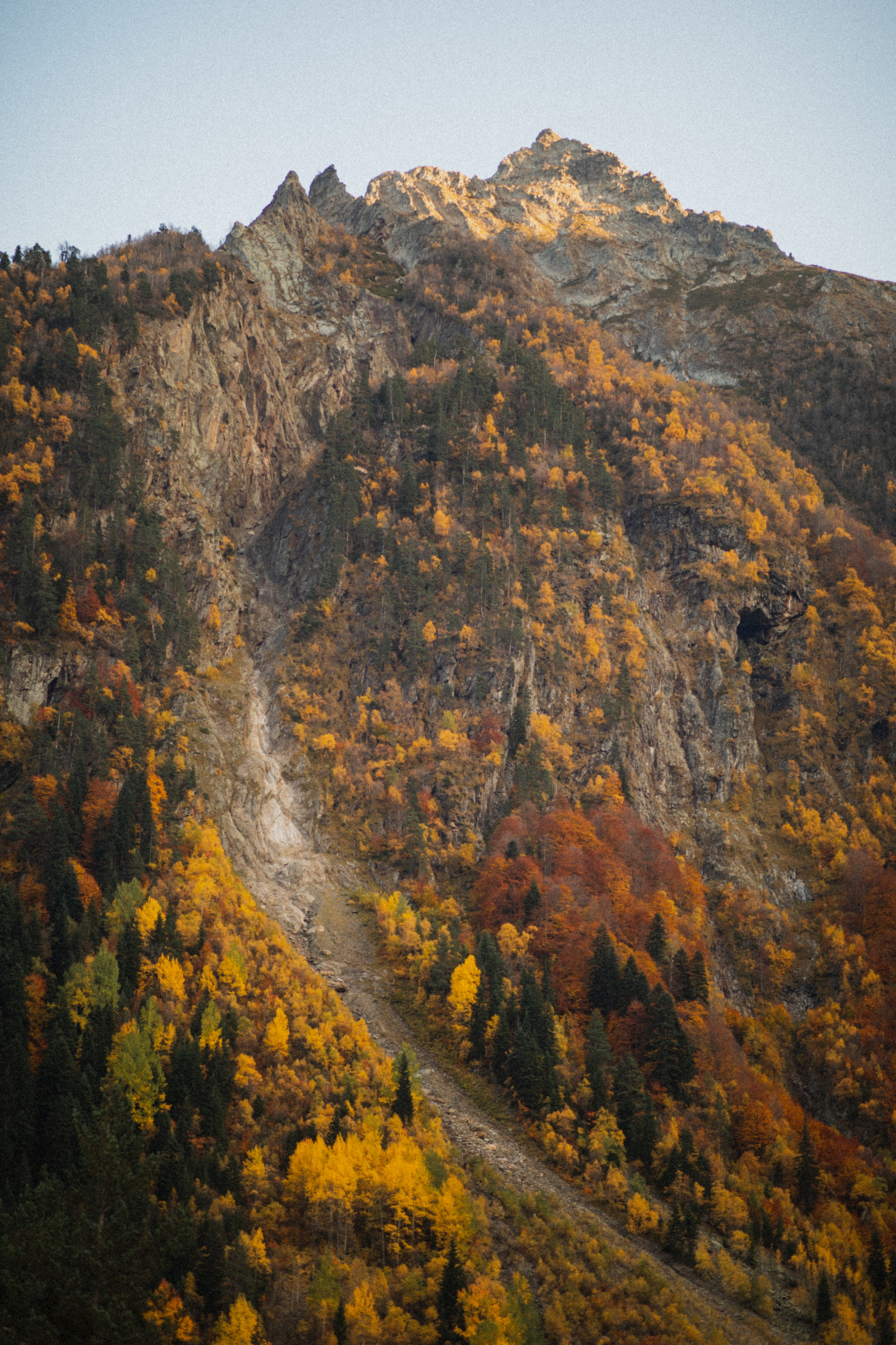 143063 download wallpaper Nature, Rocks, Path, Trees, Slope, Autumn screensavers and pictures for free