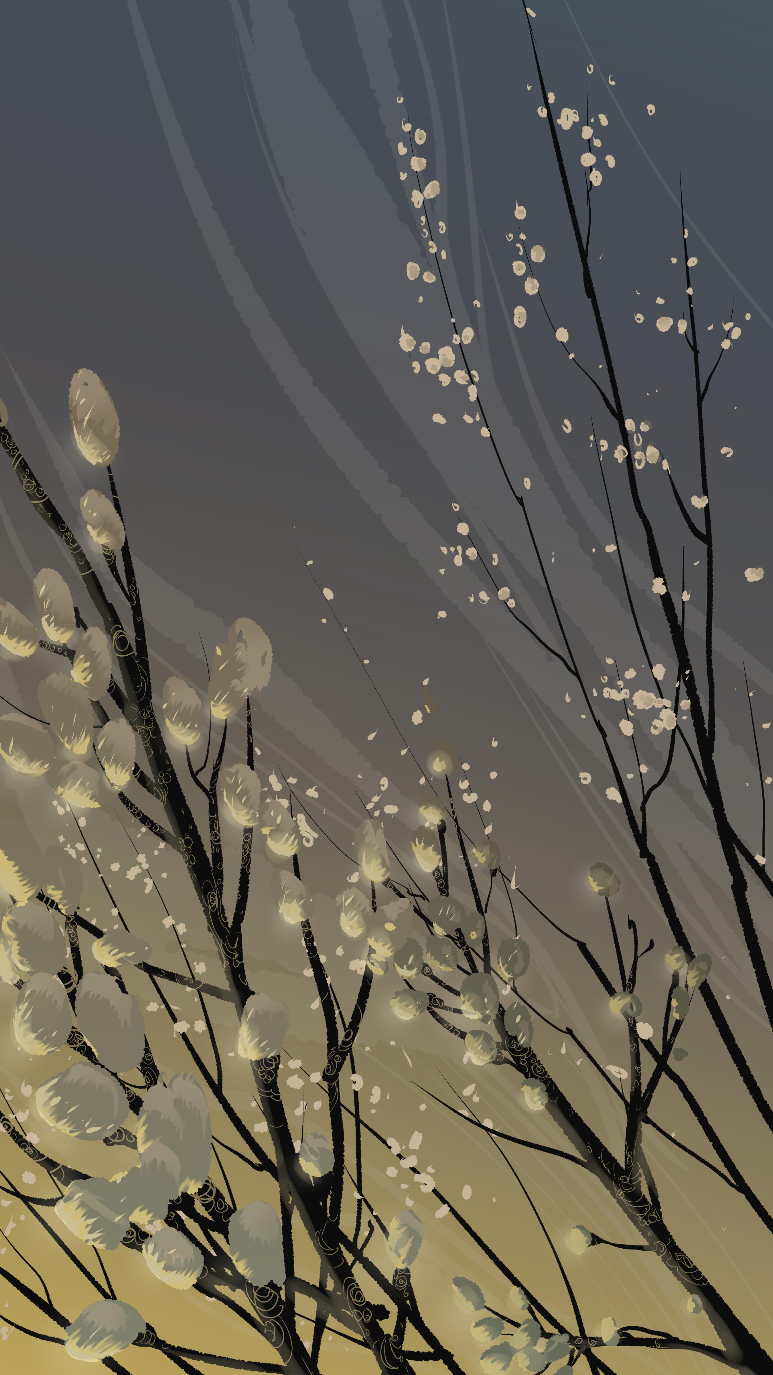 56567 Hintergrundbild herunterladen Vektor, Blumen, Kunst, Geäst, Zweige, Blühen, Blühenden, Weidenkätzchen, Verba - Bildschirmschoner und Bilder kostenlos