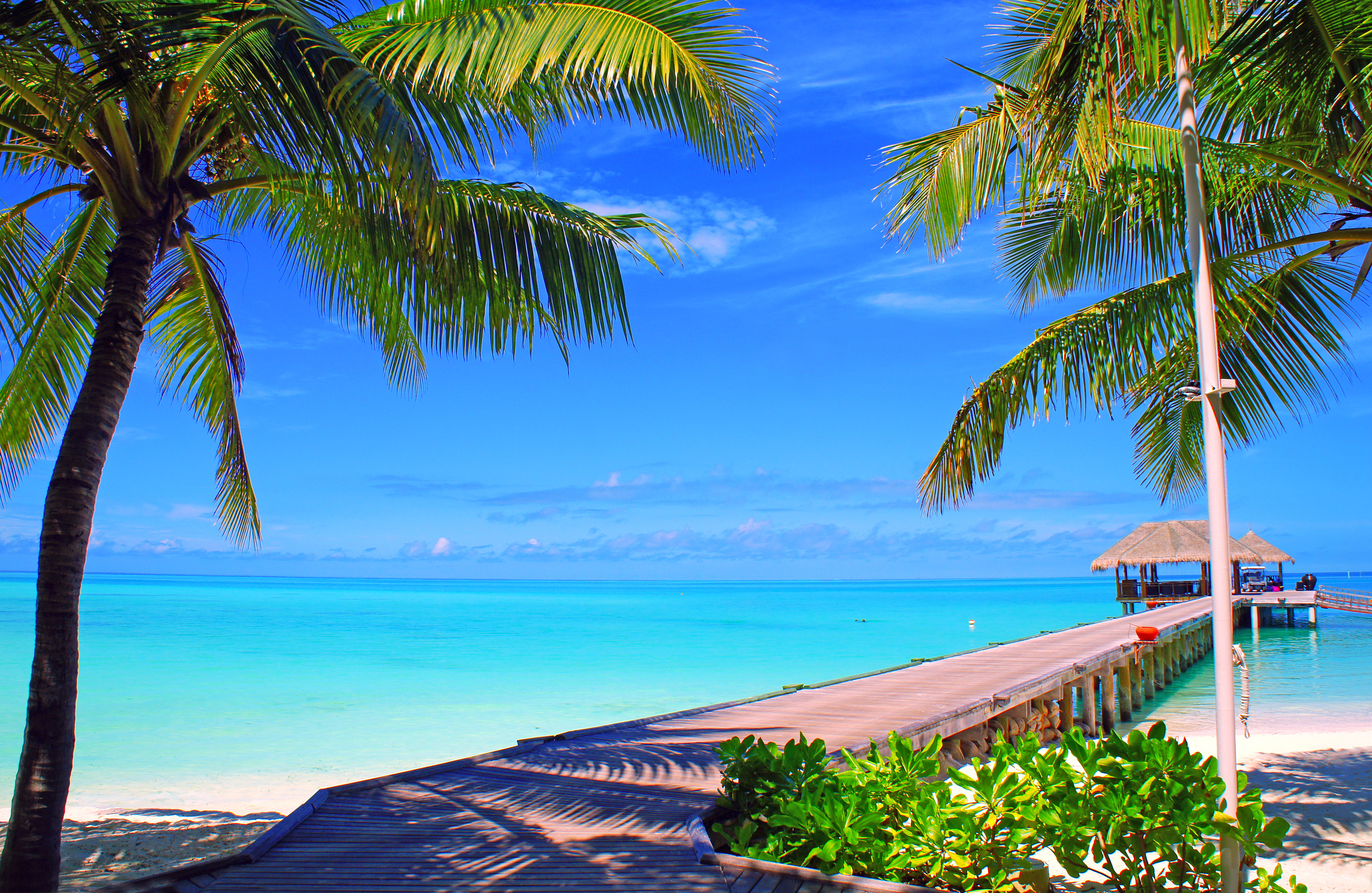 133067 Screensavers and Wallpapers Island for phone. Download Nature, Sky, Sea, Clouds, Palms, Ocean, Island, Maldives, Bungalow pictures for free