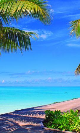 133067壁紙のダウンロード自然, モルディブ, スカイ, 雲, 島, バンガロー, 海, 海洋, 大洋, パームス-スクリーンセーバーと写真を無料で