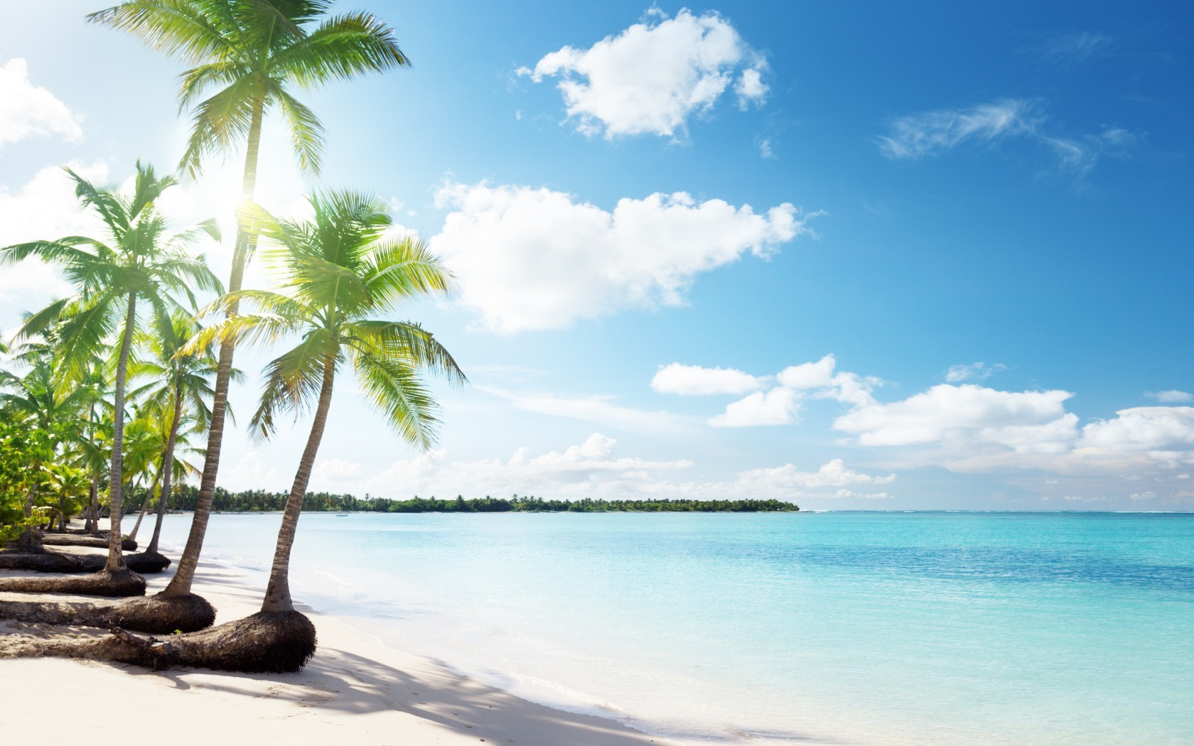 21234 download wallpaper Landscape, Sea, Beach, Palms screensavers and pictures for free