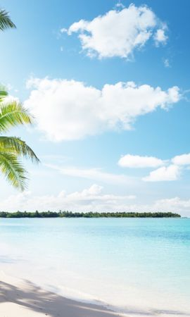 21234 скачать обои Пейзаж, Море, Пляж, Пальмы - заставки и картинки бесплатно