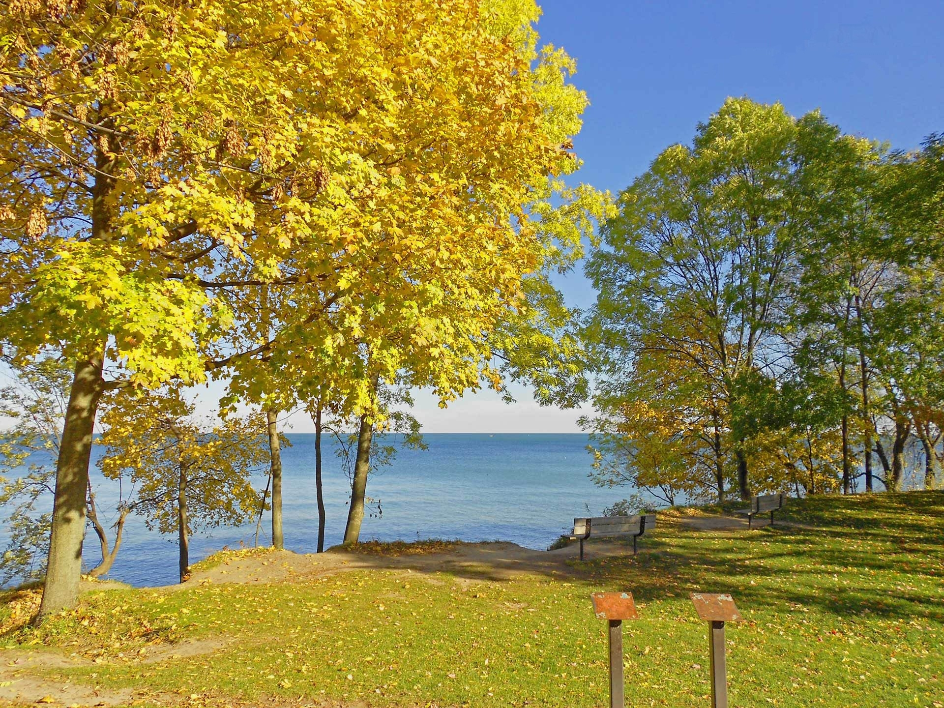131659 download wallpaper Nature, Autumn, Canadian Coast, Polyana, Glade, Benches, Landscape screensavers and pictures for free