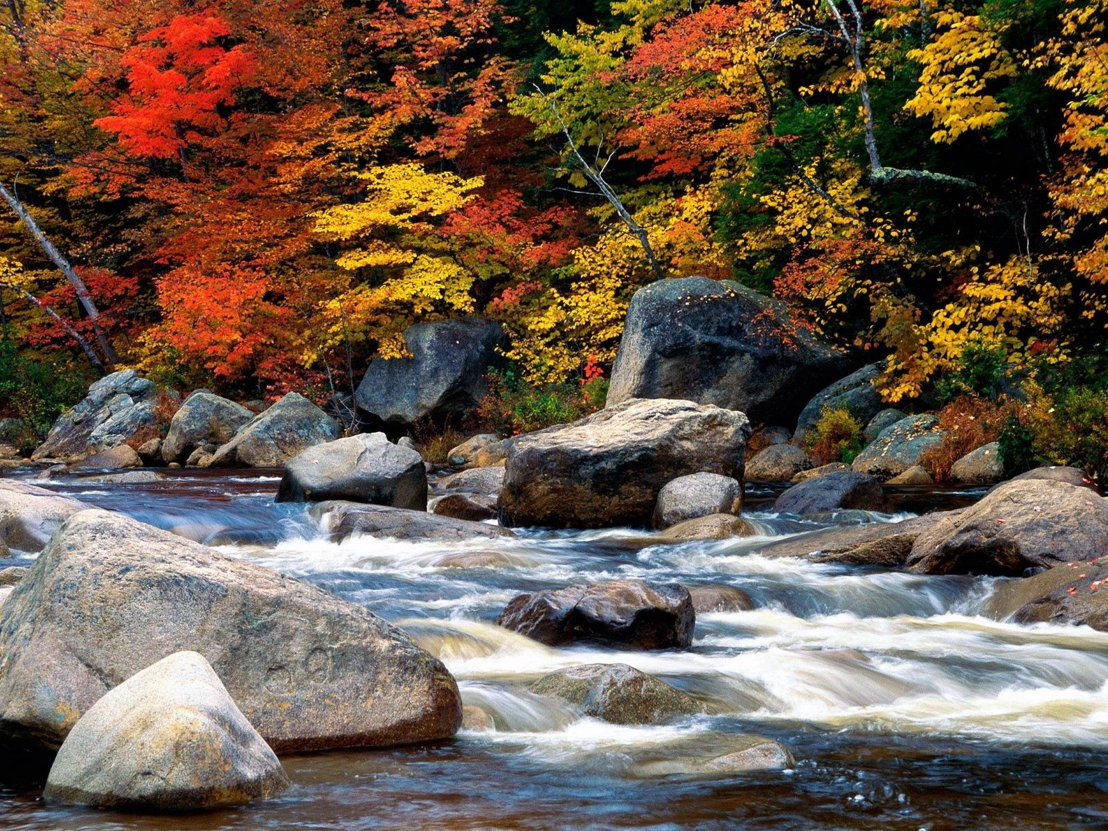 58325 download wallpaper Nature, Water, Stones, Autumn, Leaves, Flow, Village, Stream, Gurgling, Murmur, Villages screensavers and pictures for free