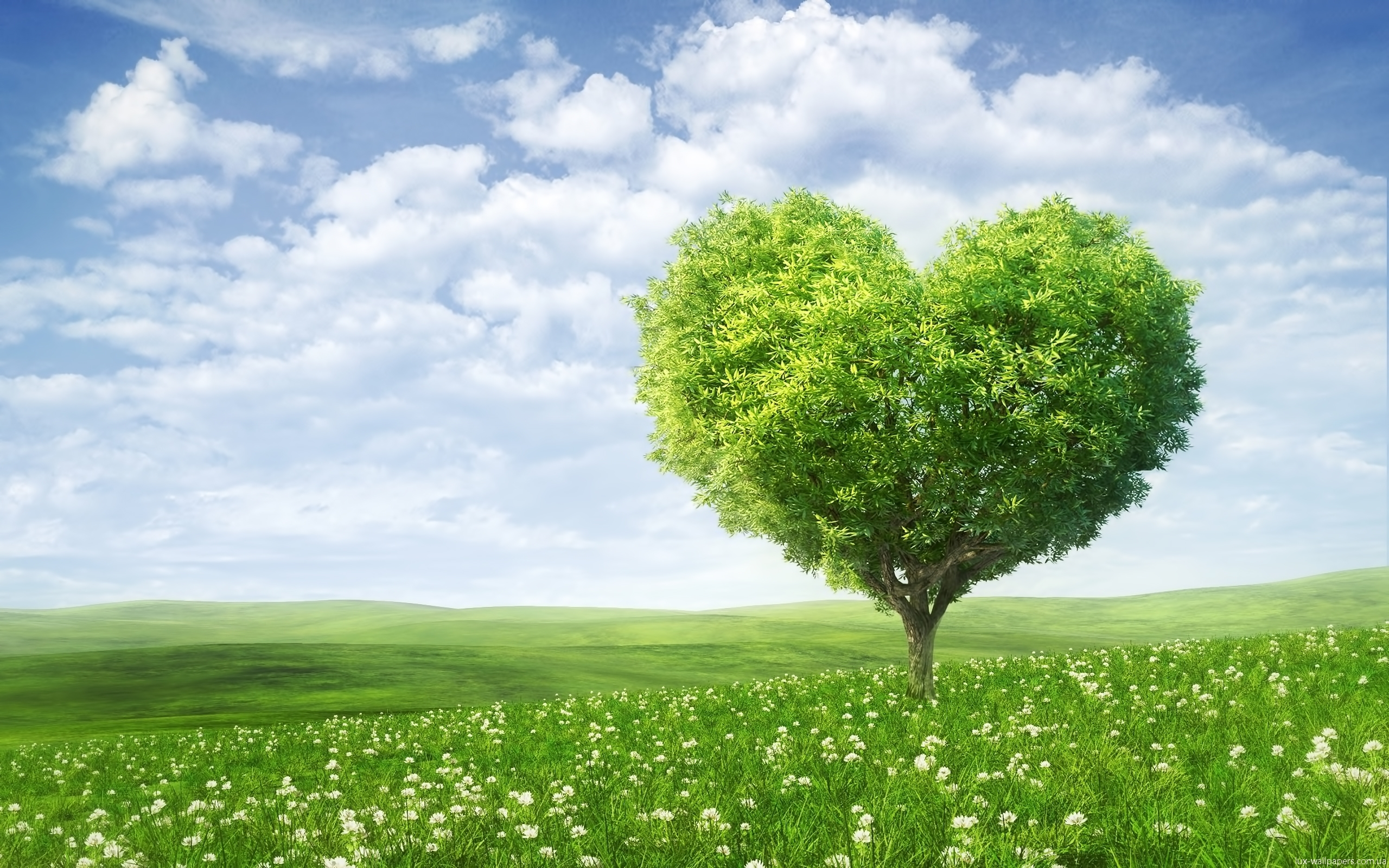 Download mobile wallpaper Love, Sky, Clouds, Hearts, Valentine's Day, Landscape, Plants, Fields, Trees, Holidays for free.