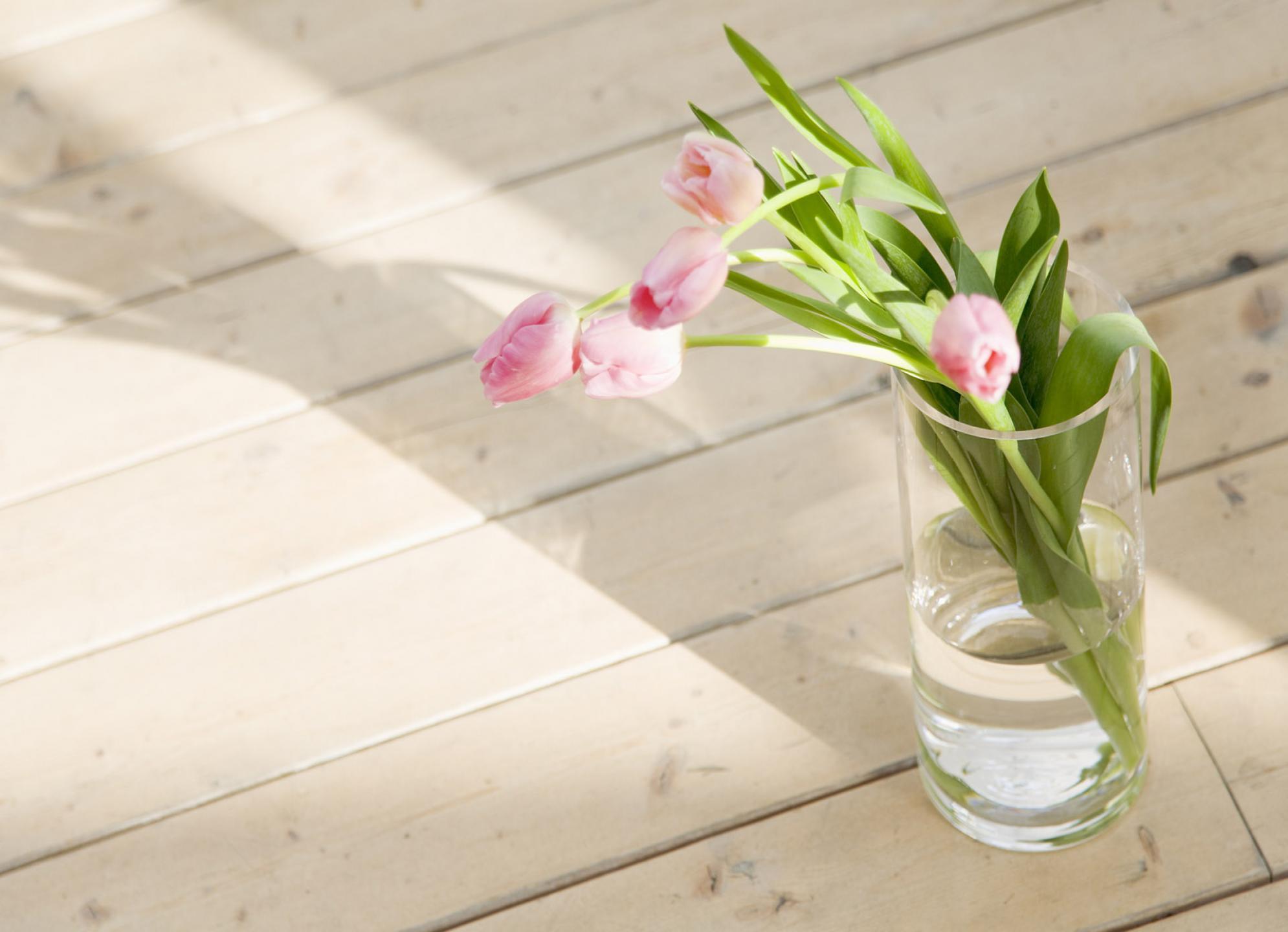 18530 скачать обои Растения, Цветы, Тюльпаны, Натюрморт - заставки и картинки бесплатно