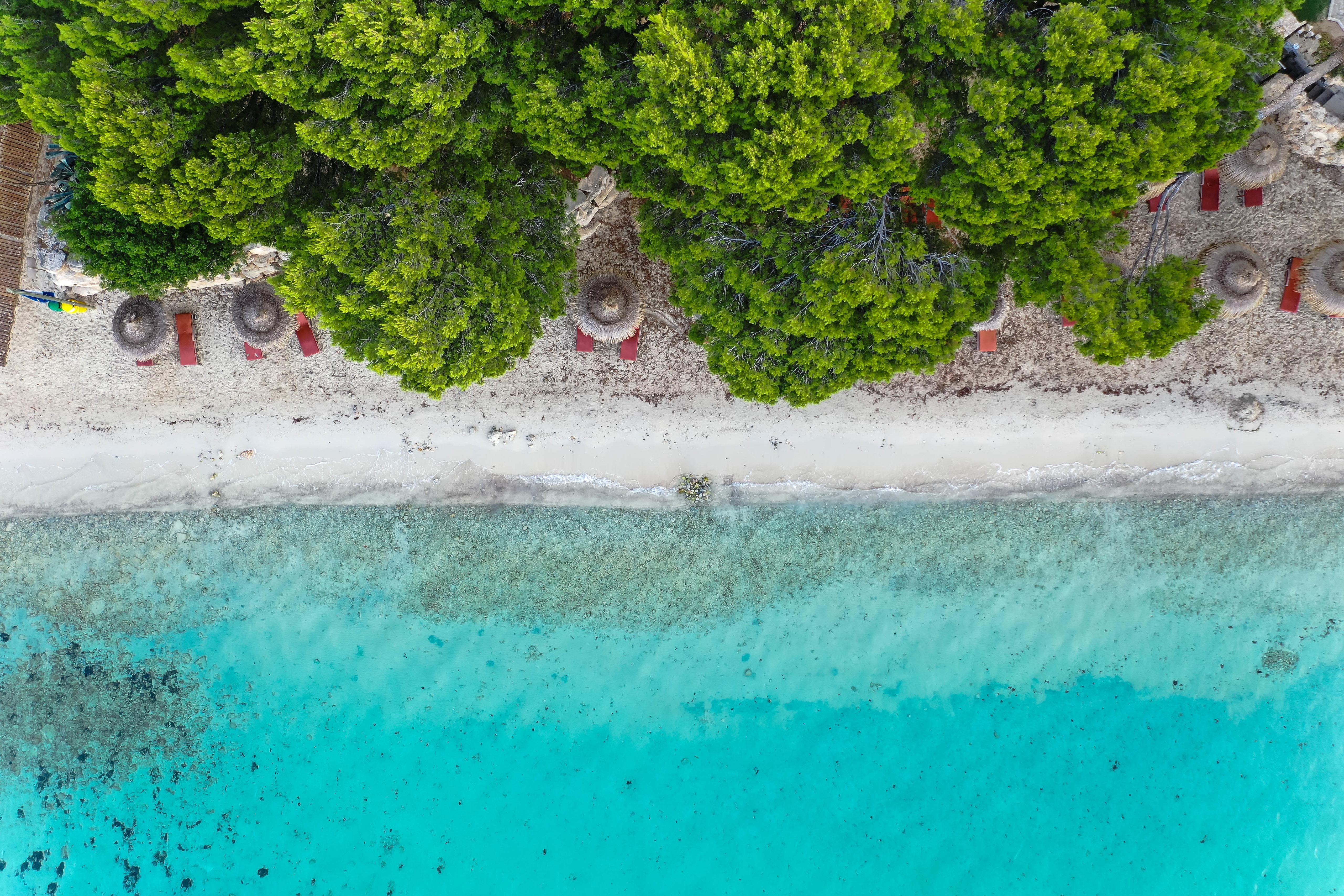 143012壁紙のダウンロード自然, ビーチ, 傘, 海, 上から見る, 木-スクリーンセーバーと写真を無料で